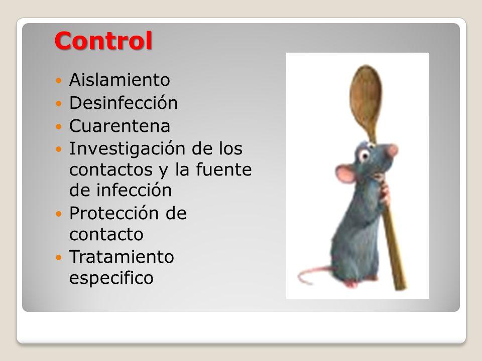 Aislamiento Desinfección Cuarentena Investigación de los contactos y la fuente de infección Protección de contacto Tratamiento especifico Control