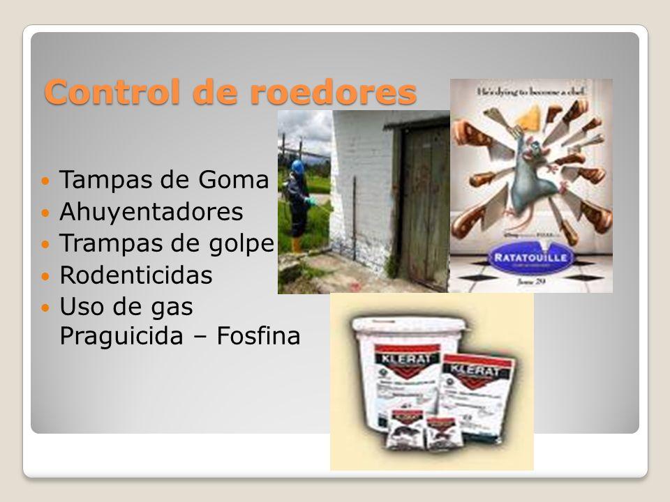 Control de roedores Tampas de Goma Ahuyentadores Trampas de golpe Rodenticidas Uso de gas Praguicida – Fosfina