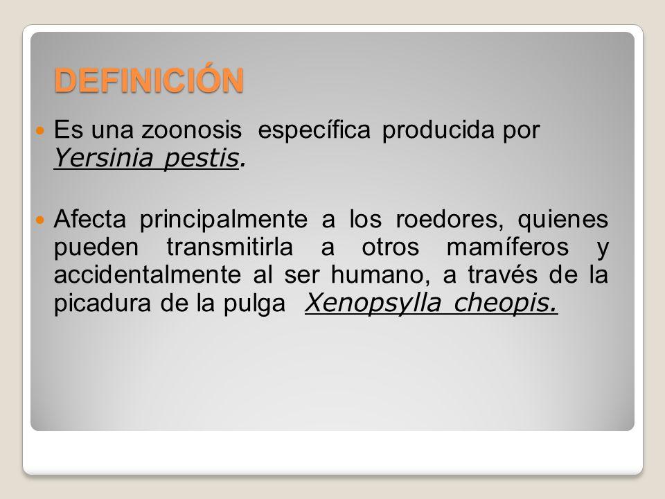 DEFINICIÓN Es una zoonosis específica producida por Yersinia pestis. Afecta principalmente a los roedores, quienes pueden transmitirla a otros mamífer