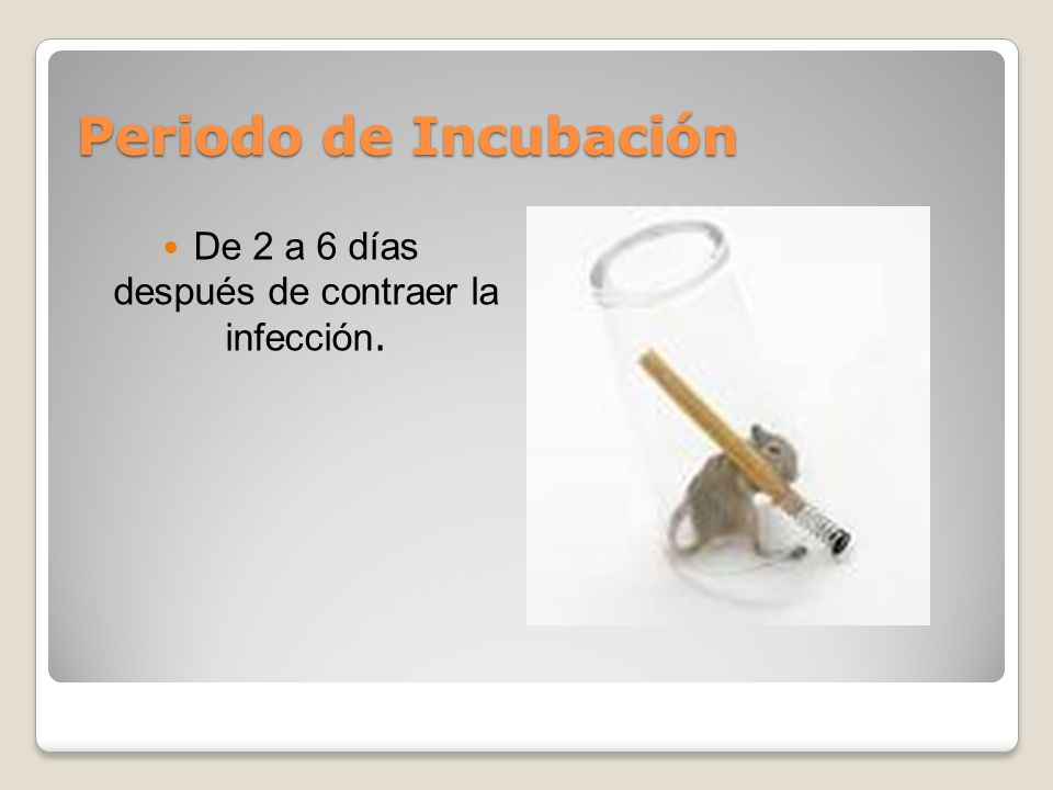 Periodo de Incubación De 2 a 6 días después de contraer la infección.