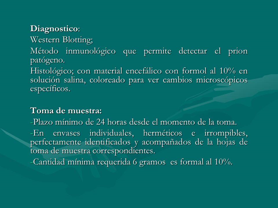 Diagnostico: Western Blotting; Método inmunológico que permite detectar el prion patógeno. Histológico; con material encefálico con formol al 10% en s
