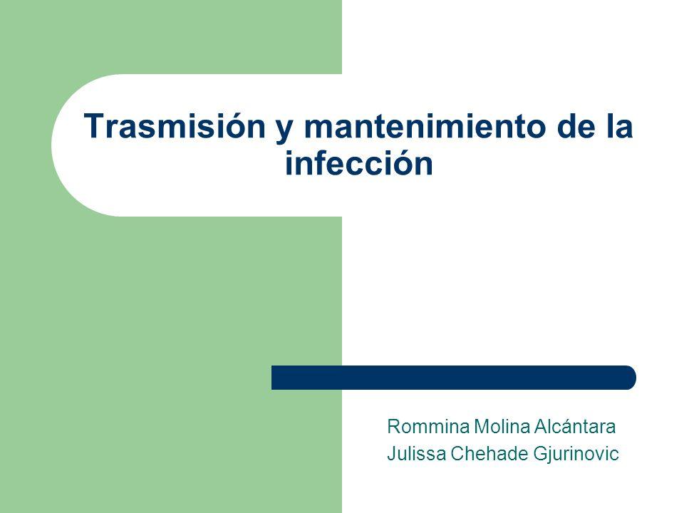 Trasmisión y mantenimiento de la infección Rommina Molina Alcántara Julissa Chehade Gjurinovic