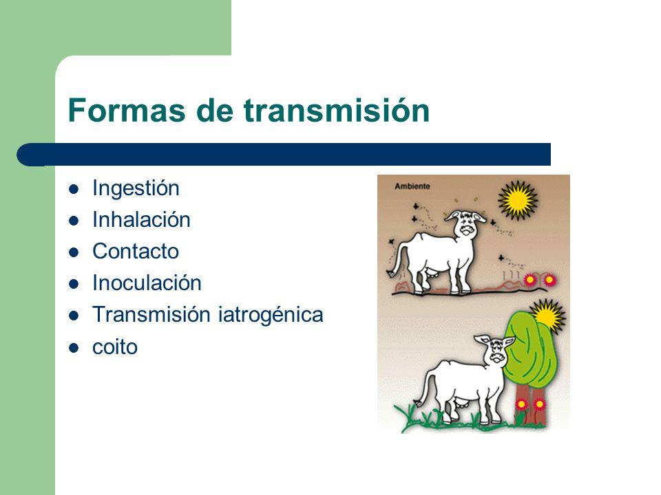 Formas de transmisión Ingestión Inhalación Contacto Inoculación Transmisión iatrogénica coito
