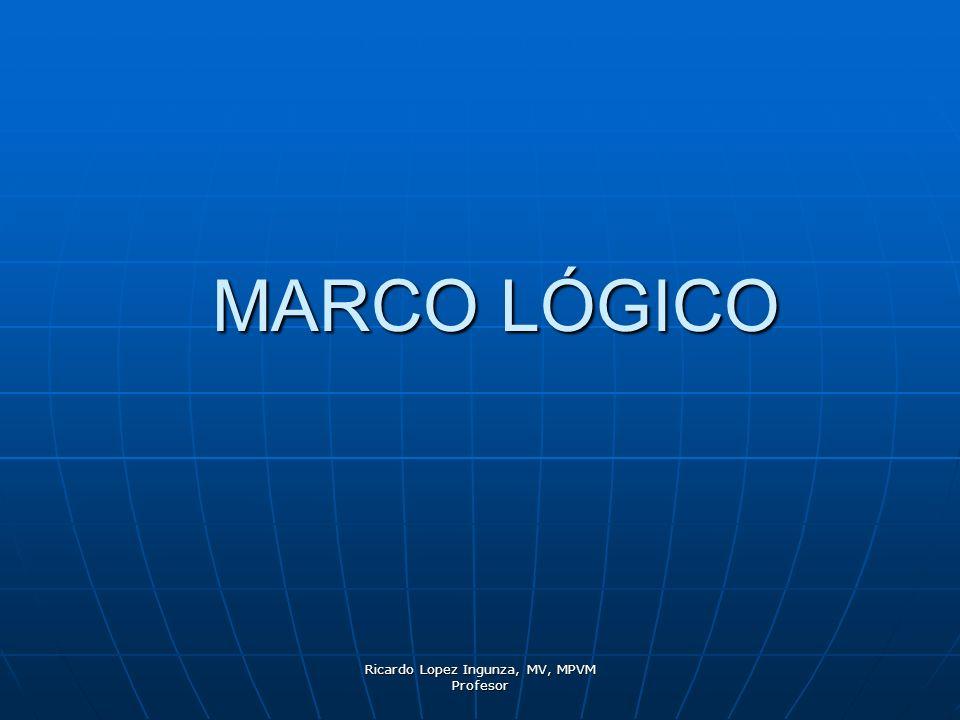 Ricardo Lopez Ingunza, MV, MPVM Profesor DEFINICIÓN DE MARCO LÓGICO El Marco Lógico es una herramienta que permite presentar de forma sistemática y lógica los objetivos de un programa y sus relaciones de causalidad.