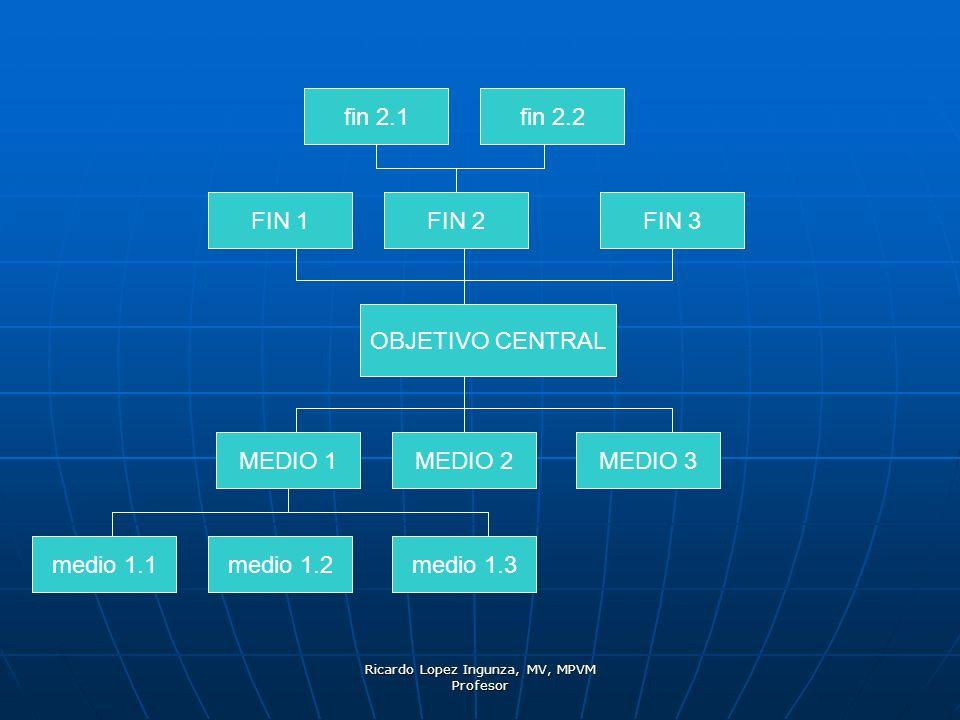 Ricardo Lopez Ingunza, MV, MPVM Profesor OBJETIVO CENTRAL MEDIO 1MEDIO 2MEDIO 3 FIN 1FIN 2 FIN 3 medio 1.1medio 1.2medio 1.3 fin 2.1fin 2.2