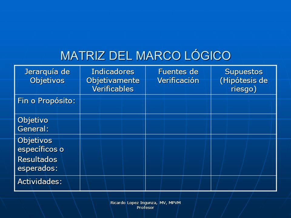 Ricardo Lopez Ingunza, MV, MPVM Profesor MATRIZ DEL MARCO LÓGICO Jerarquía de Objetivos Indicadores Objetivamente Verificables Fuentes de Verificación