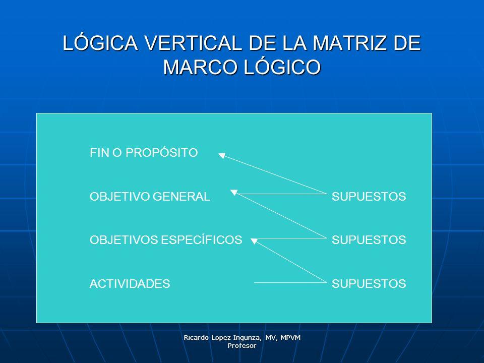 Ricardo Lopez Ingunza, MV, MPVM Profesor LÓGICA VERTICAL DE LA MATRIZ DE MARCO LÓGICO FIN O PROPÓSITO OBJETIVO GENERALSUPUESTOS OBJETIVOS ESPECÍFICOSS