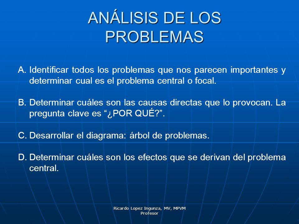 Ricardo Lopez Ingunza, MV, MPVM Profesor ANÁLISIS DE LOS PROBLEMAS A.Identificar todos los problemas que nos parecen importantes y determinar cual es