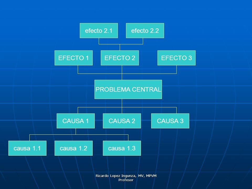 Ricardo Lopez Ingunza, MV, MPVM Profesor PROBLEMA CENTRAL CAUSA 1CAUSA 2CAUSA 3 EFECTO 1EFECTO 2 EFECTO 3 causa 1.1causa 1.2causa 1.3 efecto 2.1efecto