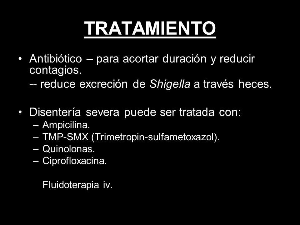TRATAMIENTO Antibiótico – para acortar duración y reducir contagios.