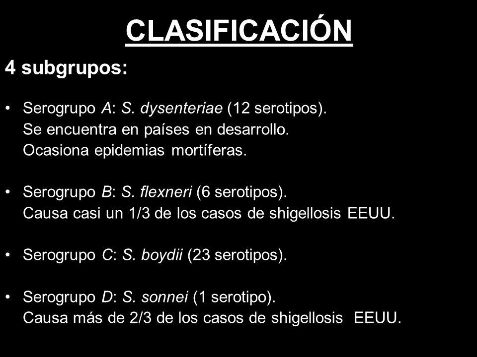 CLASIFICACIÓN 4 subgrupos: Serogrupo A: S.dysenteriae (12 serotipos).