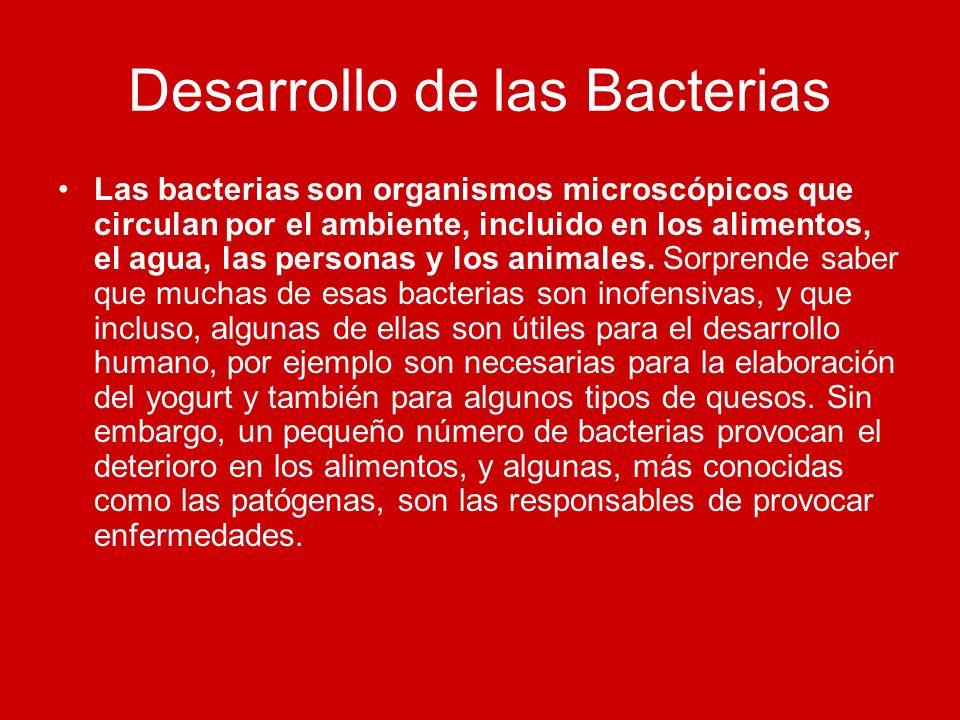 Desarrollo de las Bacterias Las bacterias son organismos microscópicos que circulan por el ambiente, incluido en los alimentos, el agua, las personas