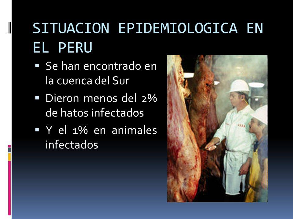 SITUACION EPIDEMIOLOGICA EN EL PERU Se han encontrado en la cuenca del Sur Dieron menos del 2% de hatos infectados Y el 1% en animales infectados