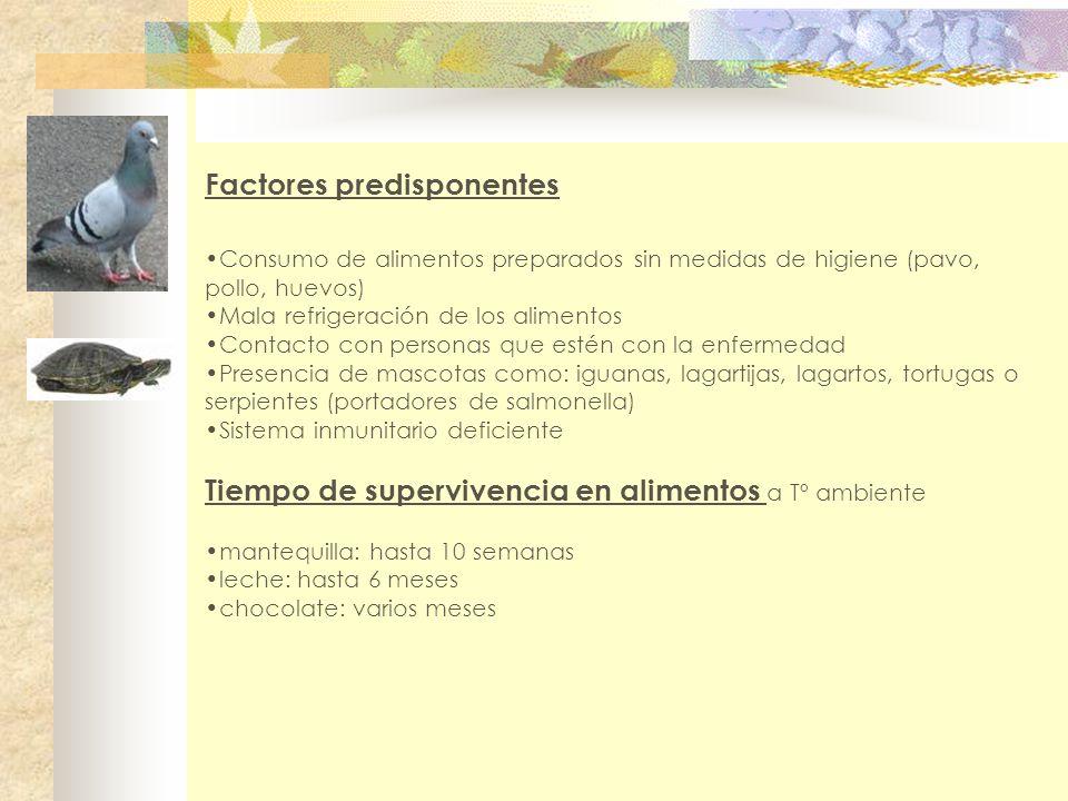 Factores predisponentes Consumo de alimentos preparados sin medidas de higiene (pavo, pollo, huevos) Mala refrigeración de los alimentos Contacto con