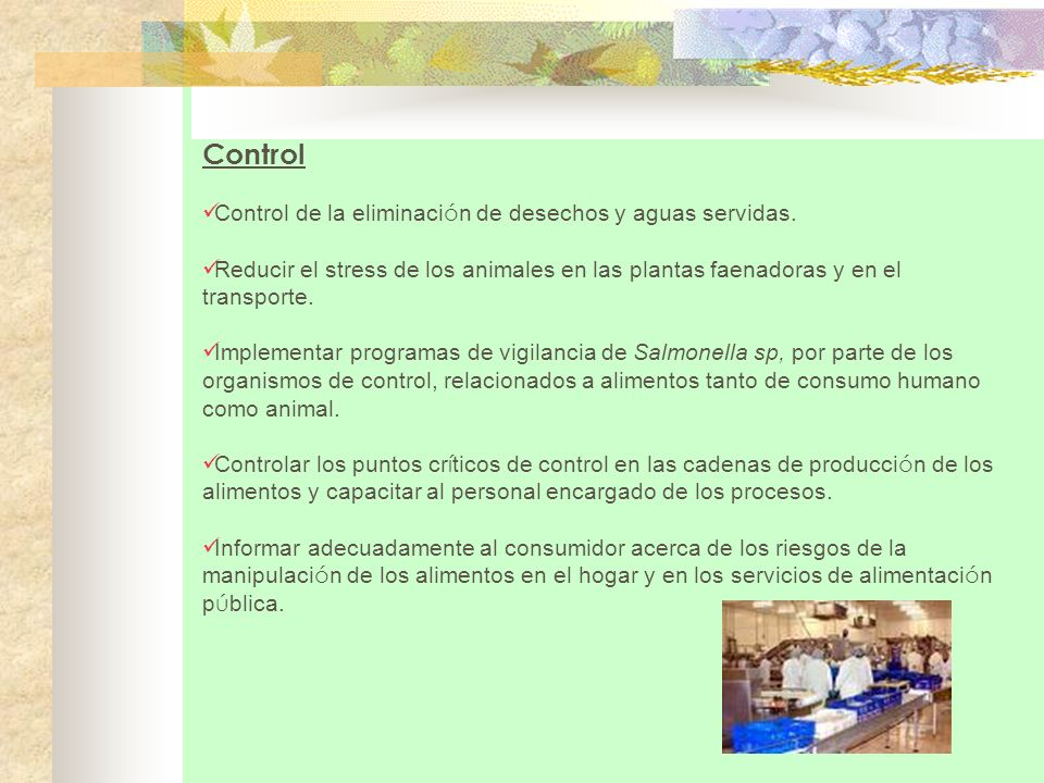 Control Control de la eliminaci ó n de desechos y aguas servidas. Reducir el stress de los animales en las plantas faenadoras y en el transporte. Impl