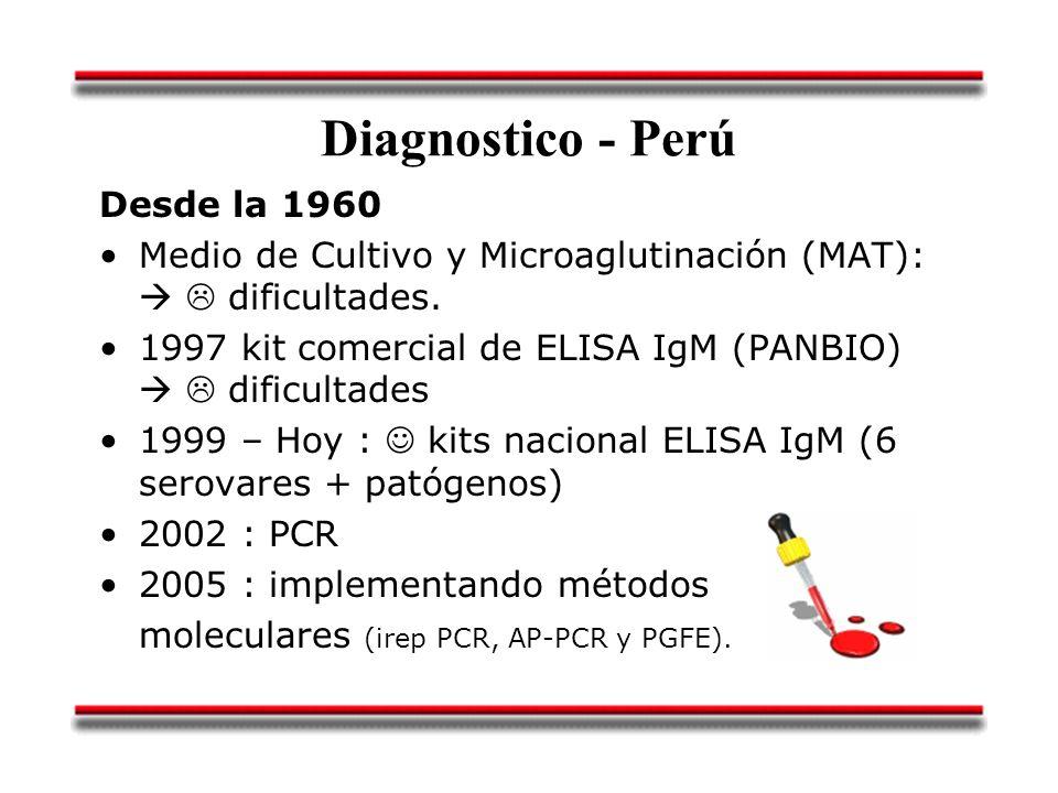 Diagnostico - Perú Desde la 1960 Medio de Cultivo y Microaglutinación (MAT): dificultades. 1997 kit comercial de ELISA IgM (PANBIO) dificultades 1999