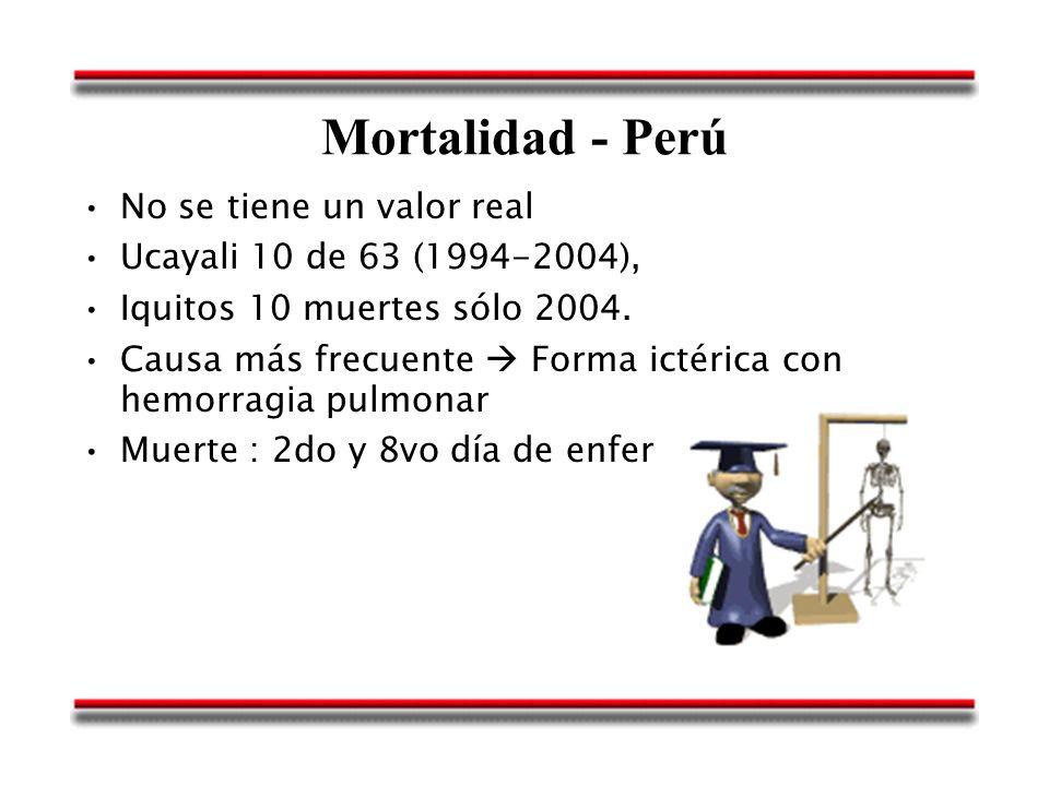 Mortalidad - Perú No se tiene un valor real Ucayali 10 de 63 (1994-2004), Iquitos 10 muertes sólo 2004. Causa más frecuente Forma ictérica con hemorra