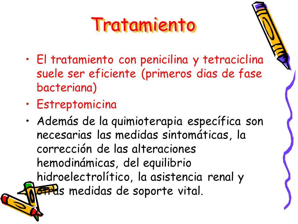El tratamiento con penicilina y tetraciclina suele ser eficiente (primeros dias de fase bacteriana) Estreptomicina Además de la quimioterapia específi