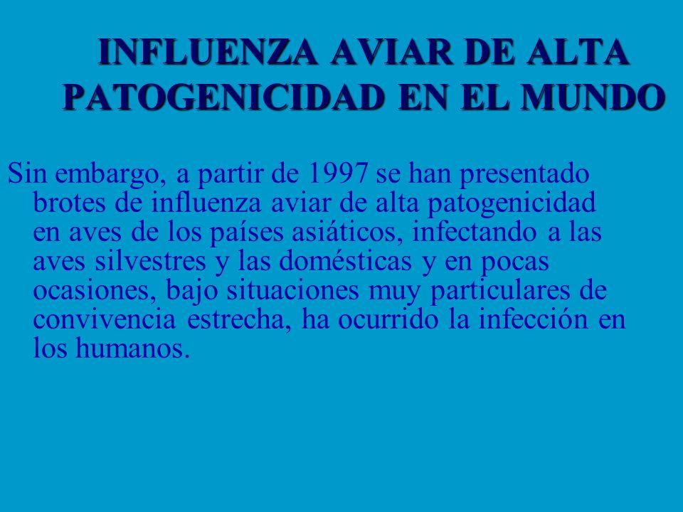 INFLUENZA AVIAR DE ALTA PATOGENICIDAD EN EL MUNDO Sin embargo, a partir de 1997 se han presentado brotes de influenza aviar de alta patogenicidad en a