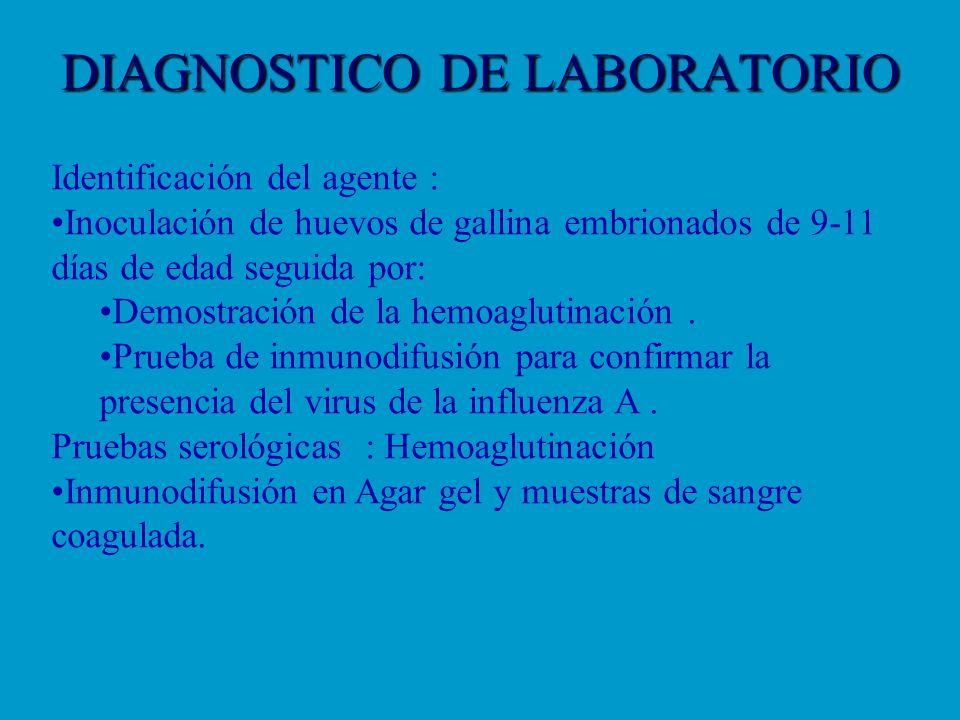 DIAGNOSTICO DE LABORATORIO Identificación del agente : Inoculación de huevos de gallina embrionados de 9-11 días de edad seguida por: Demostración de