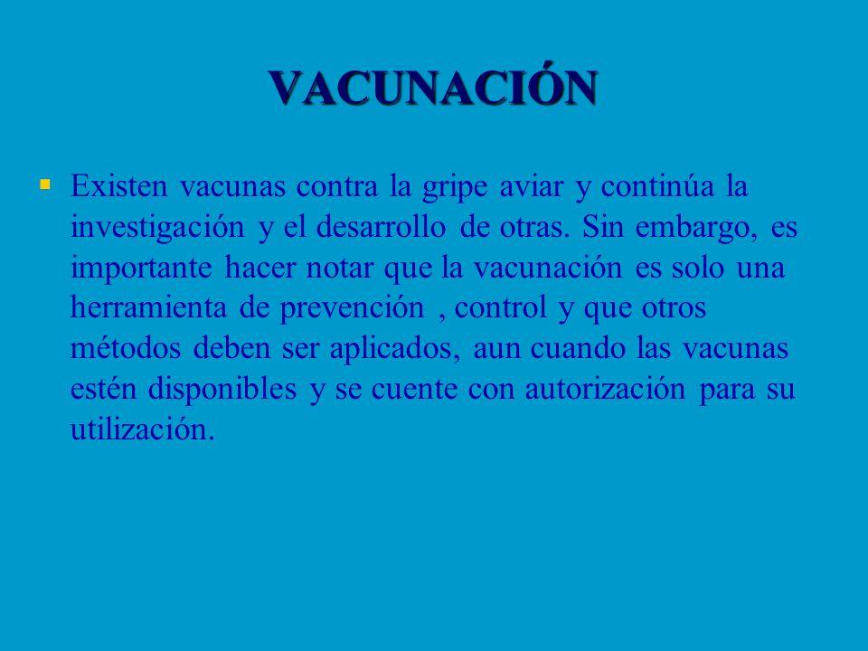 VACUNACIÓN Existen vacunas contra la gripe aviar y continúa la investigación y el desarrollo de otras. Sin embargo, es importante hacer notar que la v