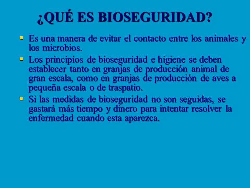 ¿QUÉ ES BIOSEGURIDAD? Es una manera de evitar el contacto entre los animales y los microbios. Es una manera de evitar el contacto entre los animales y