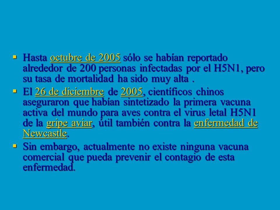 Hasta octubre de 2005 sólo se habían reportado alrededor de 200 personas infectadas por el H5N1, pero su tasa de mortalidad ha sido muy alta. Hasta oc