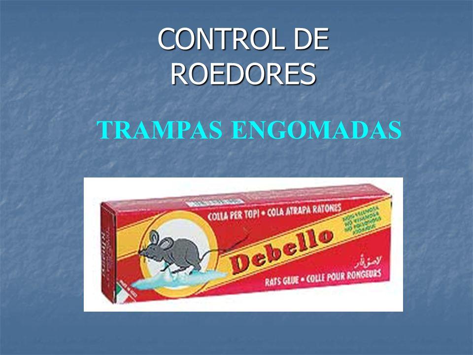 CONTROL DE ROEDORES TRAMPAS ENGOMADAS