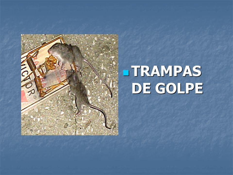 TRAMPAS DE GOLPE TRAMPAS DE GOLPE