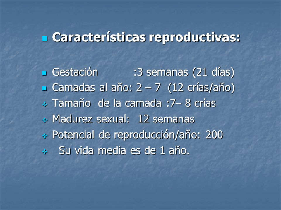 Características reproductivas: Características reproductivas: Gestación :3 semanas (21 días) Gestación :3 semanas (21 días) Camadas al año: 2 – 7 (12