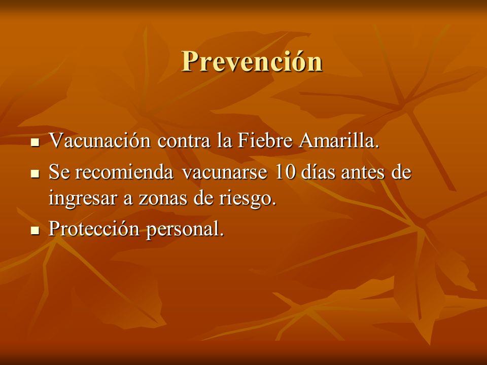 Prevención Vacunación contra la Fiebre Amarilla. Vacunación contra la Fiebre Amarilla. Se recomienda vacunarse 10 días antes de ingresar a zonas de ri