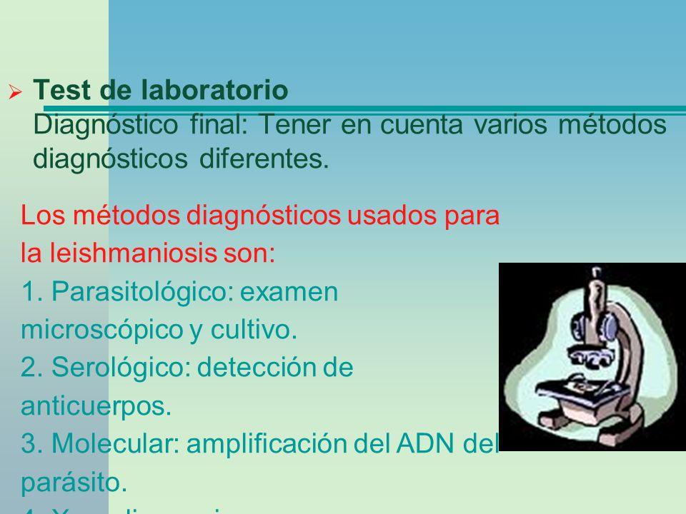 Test de laboratorio Diagnóstico final: Tener en cuenta varios métodos diagnósticos diferentes. Los métodos diagnósticos usados para la leishmaniosis s