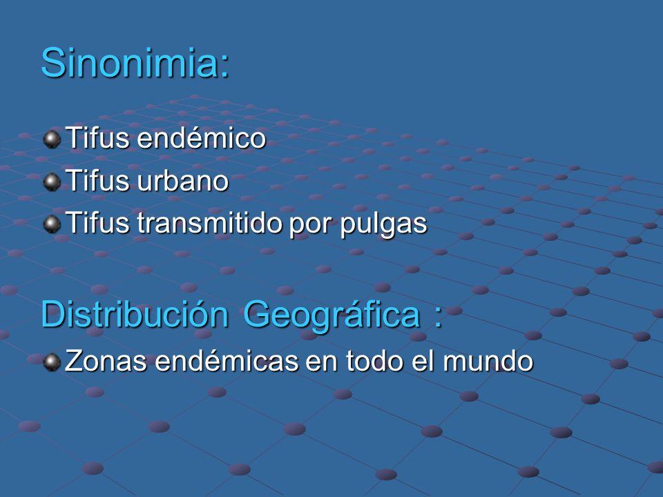 ORDEN: RICKETTSIALES FAMILIA: RICKETTSIACEAE TRIBU: RICKETTSIEAE GENERO: RICKETTSIA GRUPO DE FIEBRES MANCHADAS GRUPO TYPHUS R.