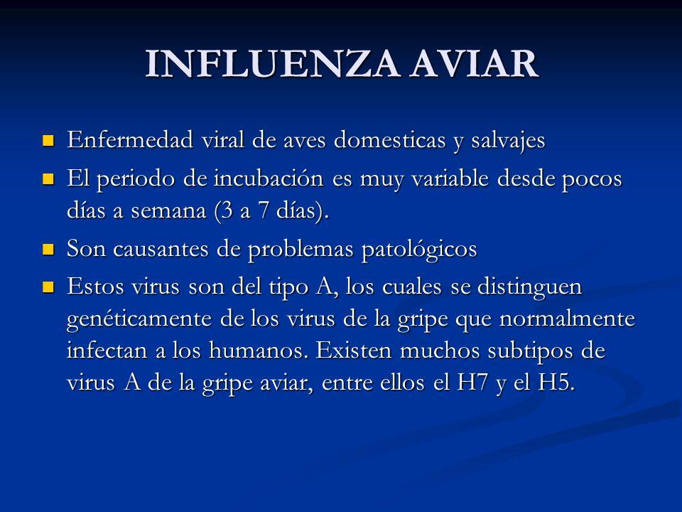 INFLUENZA AVIAR Enfermedad viral de aves domesticas y salvajes Enfermedad viral de aves domesticas y salvajes El periodo de incubación es muy variable