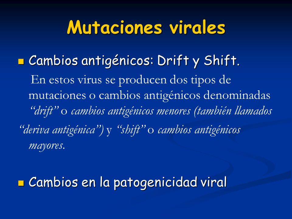 Mutaciones virales Cambios antigénicos: Drift y Shift. Cambios antigénicos: Drift y Shift. En estos virus se producen dos tipos de mutaciones o cambio