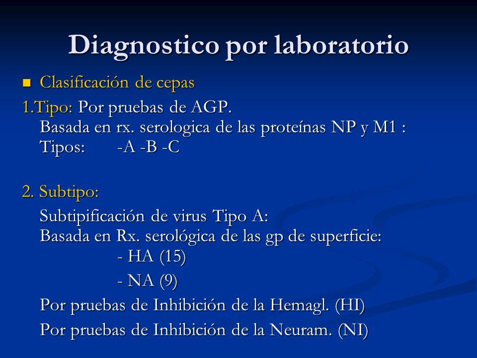 Diagnostico por laboratorio Clasificación de cepas Clasificación de cepas 1.Tipo: Por pruebas de AGP. Basada en rx. serologica de las proteínas NP y M