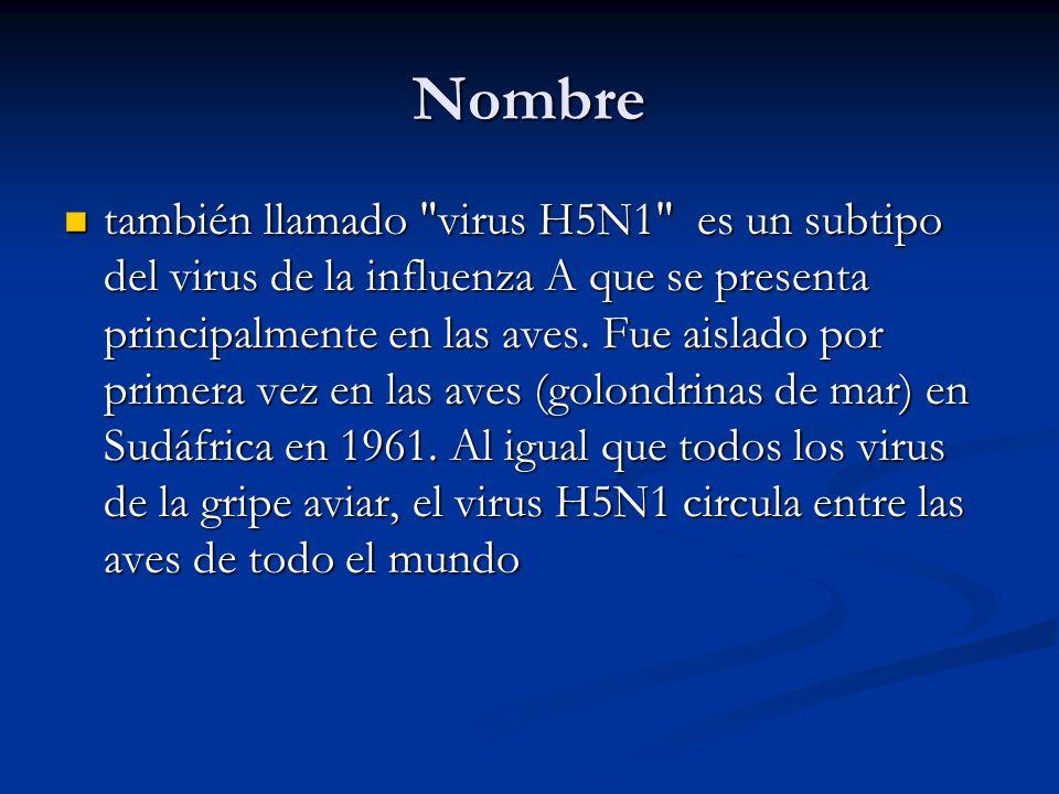 Virus de Influenza tipo A ORTHOMIXOVIRUS ssARN (-) 8 segmentos y 10 proteinas virales