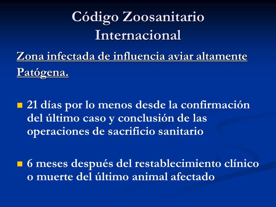 Código Zoosanitario Internacional Zona infectada de influencia aviar altamente Patógena. 21 días por lo menos desde la confirmación del último caso y