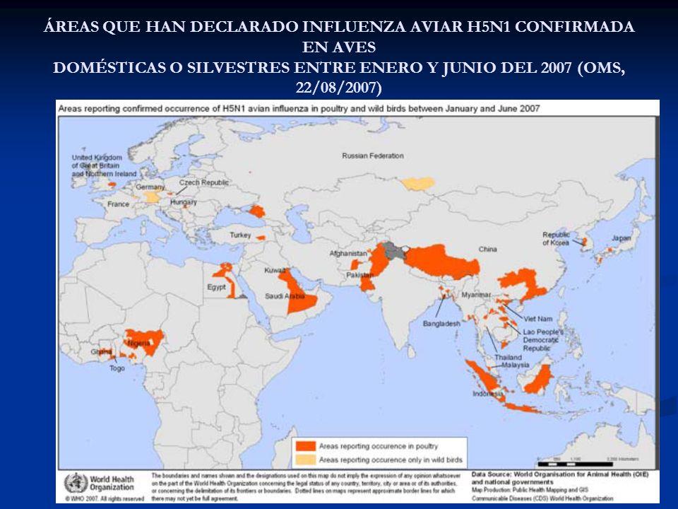 ÁREAS QUE HAN DECLARADO INFLUENZA AVIAR H5N1 CONFIRMADA EN AVES DOMÉSTICAS O SILVESTRES ENTRE ENERO Y JUNIO DEL 2007 (OMS, 22/08/2007)