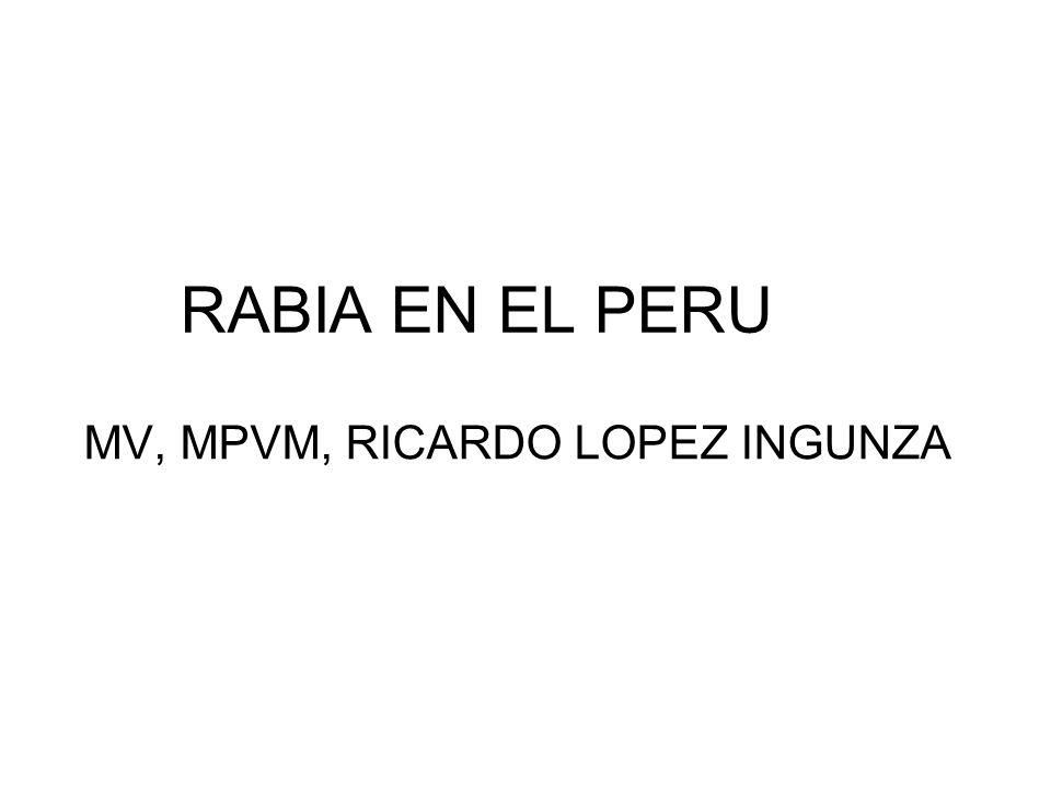 RABIA EN EL PERU MV, MPVM, RICARDO LOPEZ INGUNZA