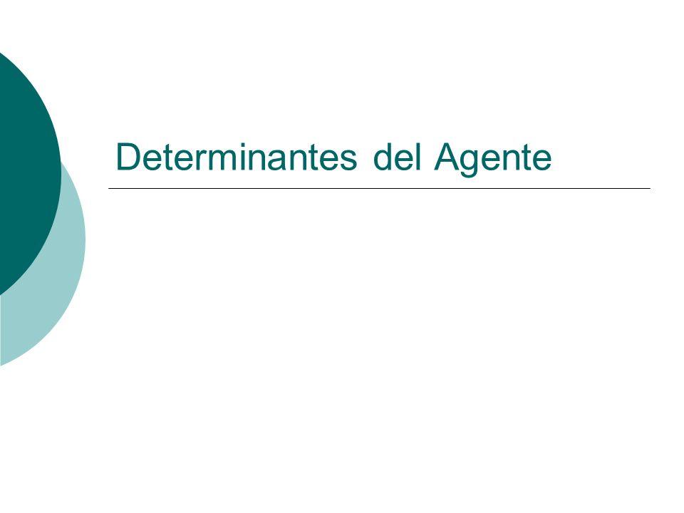 Determinantes del Agente