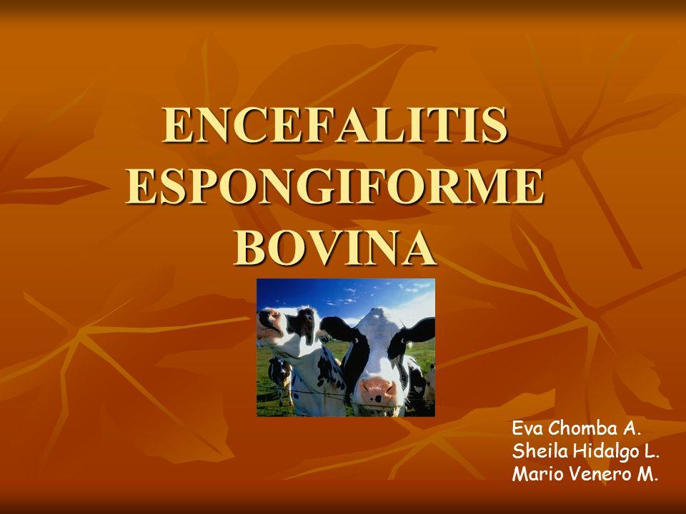 ENCEFALITIS ESPONGIFORME BOVINA Eva Chomba A. Sheila Hidalgo L. Mario Venero M.