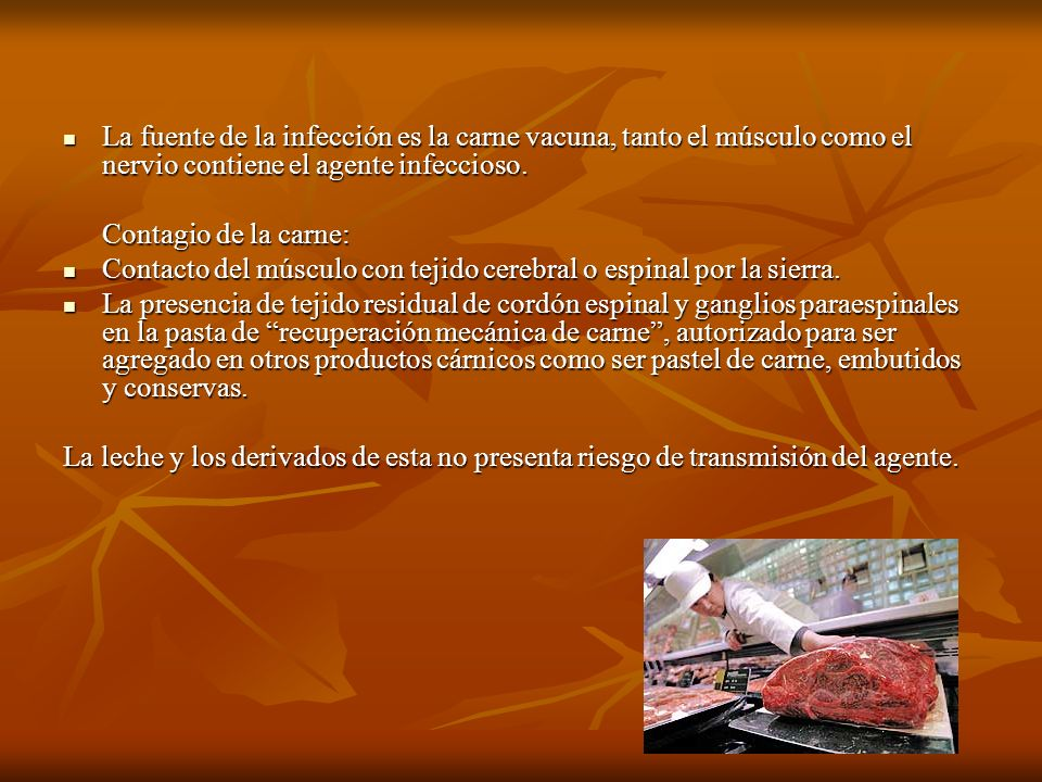 La fuente de la infección es la carne vacuna, tanto el músculo como el nervio contiene el agente infeccioso. La fuente de la infección es la carne vac