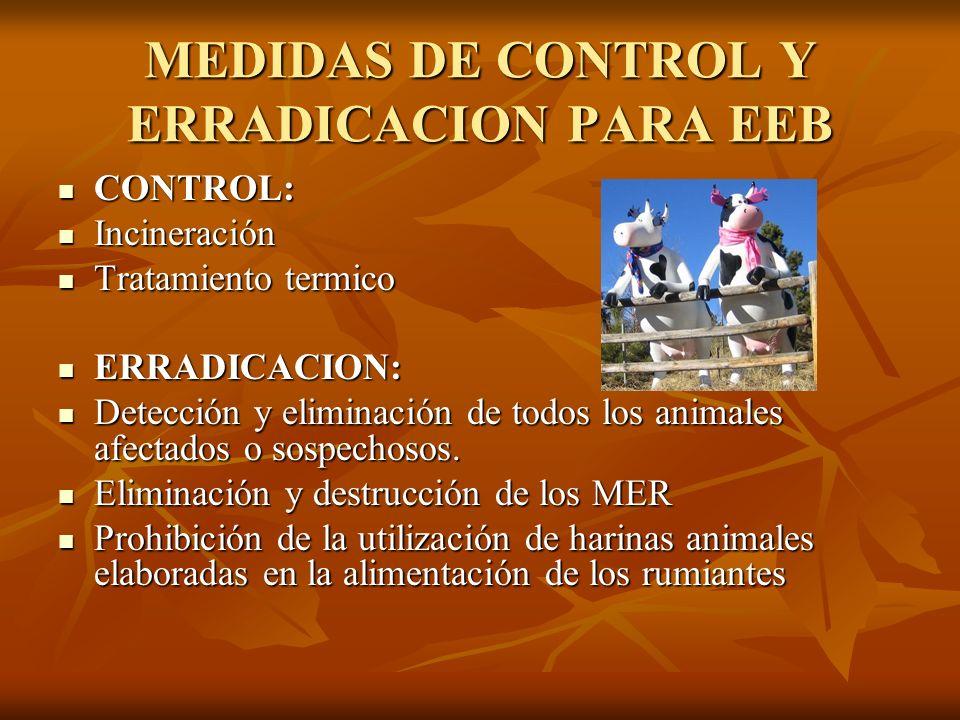 MEDIDAS DE CONTROL Y ERRADICACION PARA EEB CONTROL: CONTROL: Incineración Incineración Tratamiento termico Tratamiento termico ERRADICACION: ERRADICAC