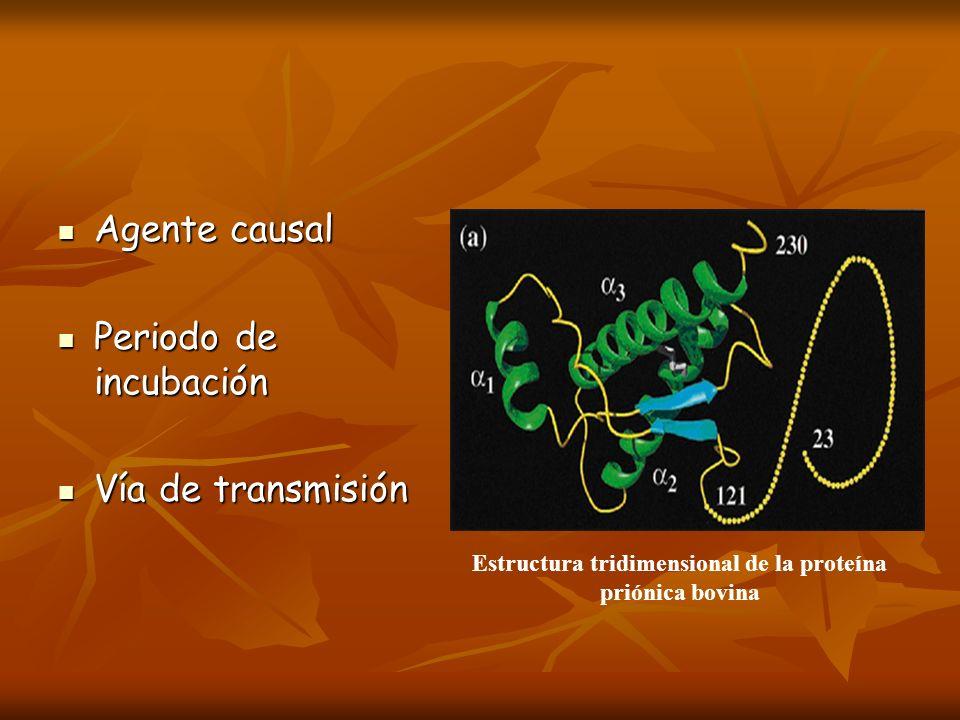 Agente causal Agente causal Periodo de incubación Periodo de incubación Vía de transmisión Vía de transmisión Estructura tridimensional de la proteína