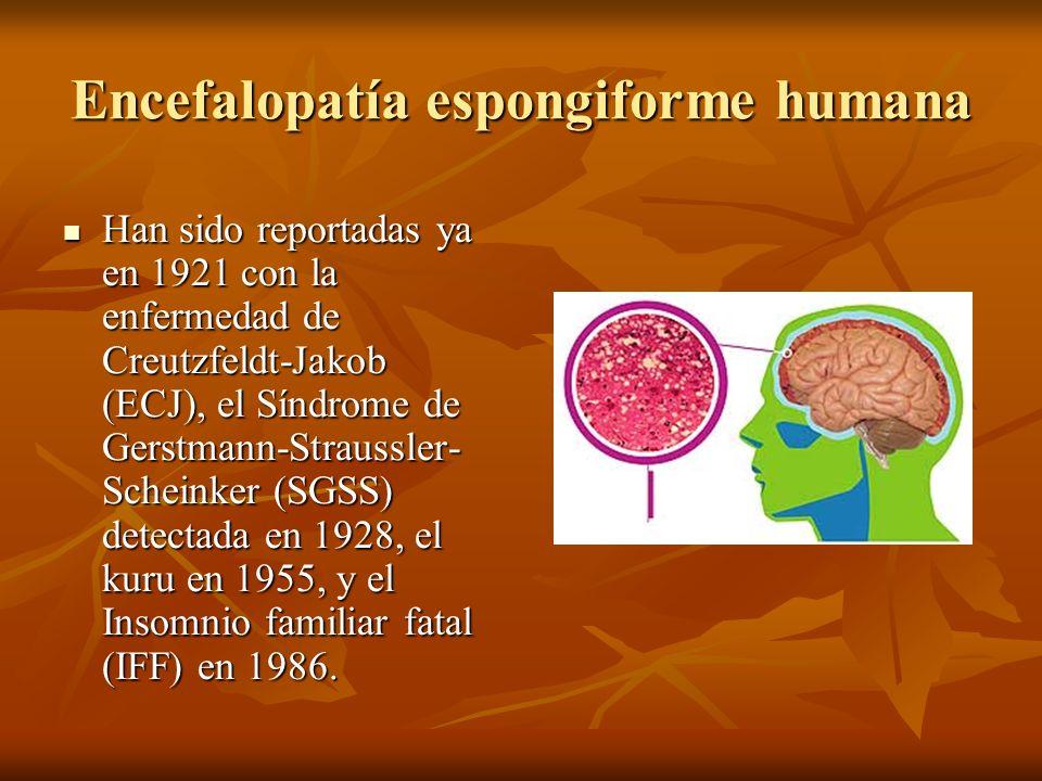 Encefalopatía espongiforme humana Han sido reportadas ya en 1921 con la enfermedad de Creutzfeldt-Jakob (ECJ), el Síndrome de Gerstmann-Straussler- Sc