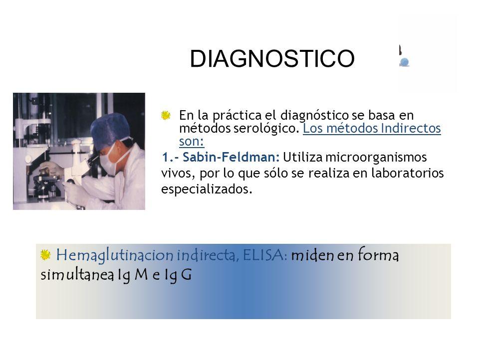 Hemaglutinacion indirecta, ELISA: miden en forma simultanea Ig M e Ig G DIAGNOSTICO En la práctica el diagnóstico se basa en métodos serológico. Los m