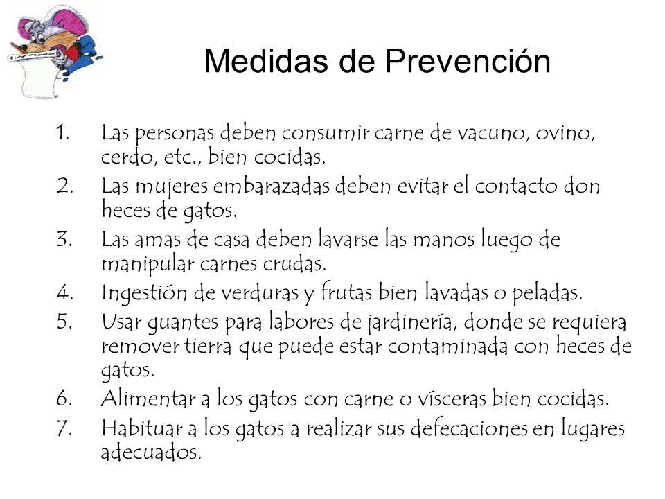 Medidas de Prevención 1.Las personas deben consumir carne de vacuno, ovino, cerdo, etc., bien cocidas. 2.Las mujeres embarazadas deben evitar el conta