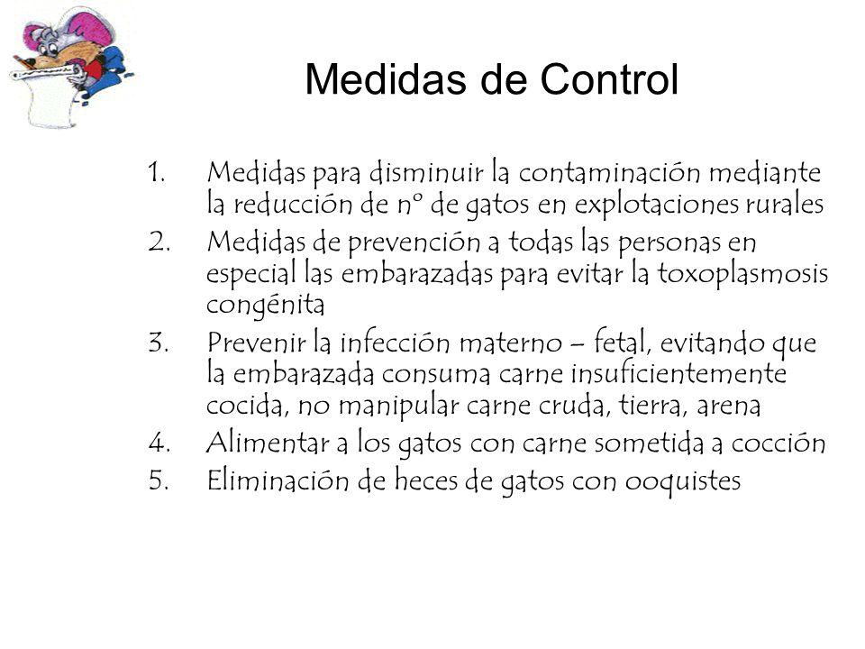 Medidas de Control 1.Medidas para disminuir la contaminación mediante la reducción de nº de gatos en explotaciones rurales 2.Medidas de prevención a t