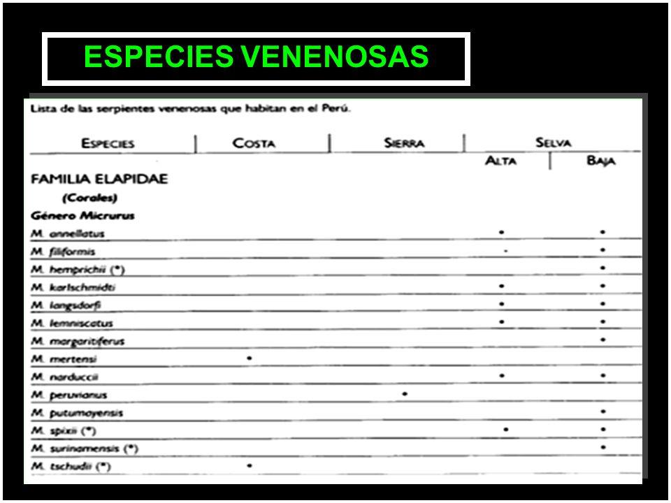 ESPECIES VENENOSAS
